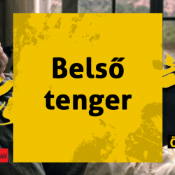 0226-belso