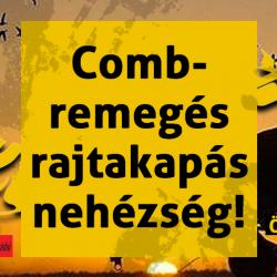 0313-combremeges
