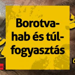 0905-borotva