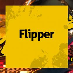 1201-flipper