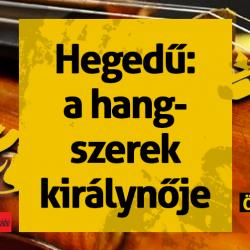 0113-hegedu